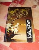 Икэбана, японское искусство аранжировки цветов Чебоксары