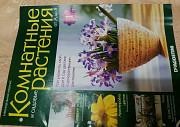 Журналы,брошюра -Комнатные растения Смоленск