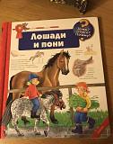 Книга про лошадей и пони с окошечками Калининград