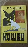 Книга по содержанию за домашними кошками Саратов