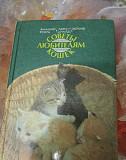 Книга Советы любителям кошек 353стр Самара