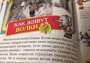 Книга знаний для малышей Казань