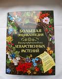 Большая энциклопедия высокоэффективных лекарствен Екатеринбург