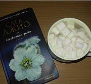 Книга Ежевичная зима Пермь