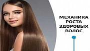 Курс роста здоровых волос (Владимир Животов) Санкт-Петербург