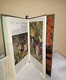 Книга Дары природы Волгоград