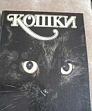 Кошки. Альбом Рязань