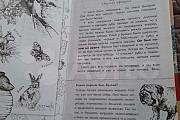 Книга Биология. Классический произведения с комме Кострома
