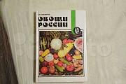 Овощи России, автор Пивоваров В. Ф Киров