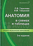 Анатомия Екатеринбург