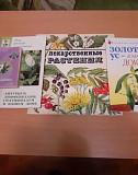 Брошюры о цветах и растениях Воронеж