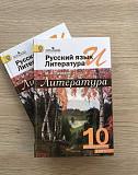 Литература 10 класс Лебедев Саратов