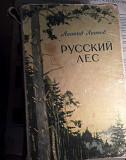 Ллесков Русский лес Чебоксары