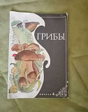 Журнал грибы СССР Нижний Новгород