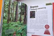 Энциклопедия для детей. Encyclopedia Britannica Курск