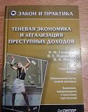Книга Теневая экономика и легализация. Омск