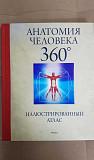 Анатомия человека 360. Иллюстрированный атлас. Тверь