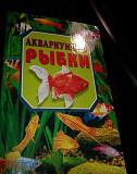 Аквариумные рыбки Мурманск