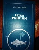 Две книги о рыбах Хабаровск